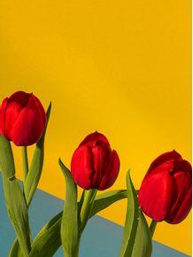 quadro-red-blue-tulipas