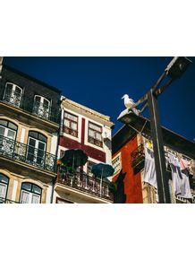 quadro-portugal-3