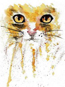 quadro-splash-cat
