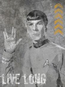 quadro-concrete-spock--live-long