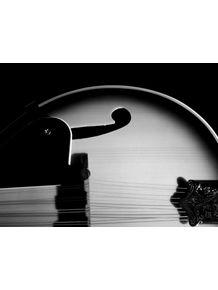 quadro-mandolin
