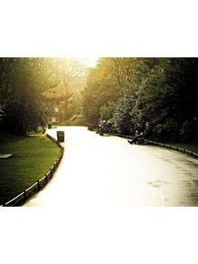 quadro-st-stephens-green-park