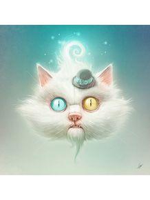 quadro-the-odd-kitty