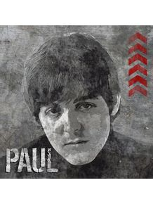 quadro-concrete-paul--beatles