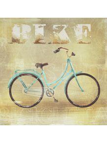 quadro-bike-transportes