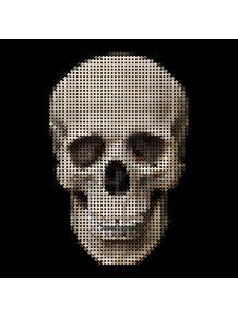 quadro-cross-skull