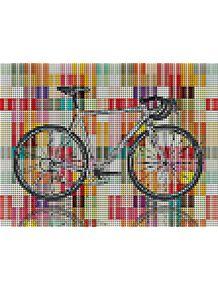quadro-bike-ball