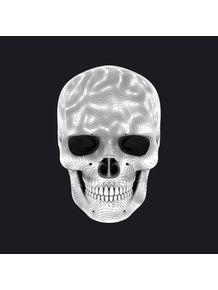 quadro-white-skull-01