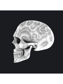quadro-white-skull-02