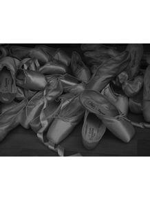 quadro-sapatilha-de-ballet-01