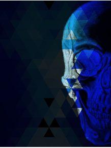 quadro-blueskull