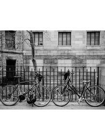 quadro-bike-nova-york