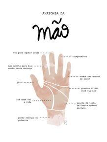 quadro-anatomia-da-mao