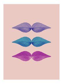 quadro-3-bigodes