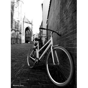 quadro-bike-em-nijmegen