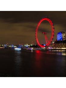 quadro-the-amazing-london-eye