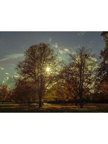 quadro-hyde-park-sunset