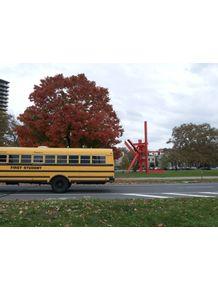 quadro-bus