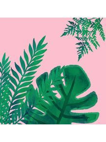 quadro-plants