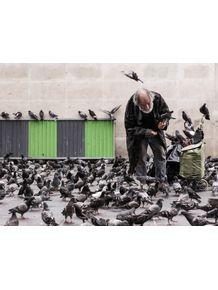 quadro-pombas-francesas