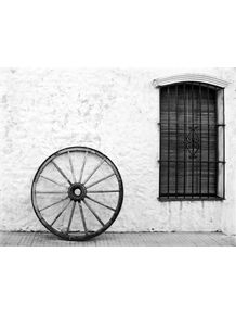 quadro-roda-pb