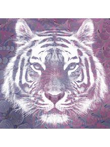 quadro-purple-tiger-spirit