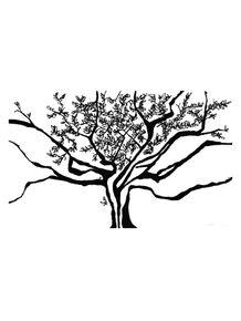 quadro-shadow-tree