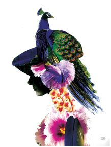 quadro-naturaly-audrey