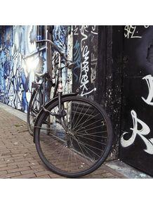 quadro-amsterdam-bike-e-grafitti