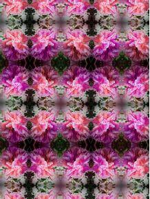 quadro-floral-01