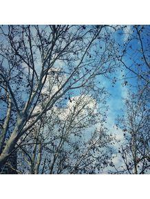 quadro-outono-azul-e-branco