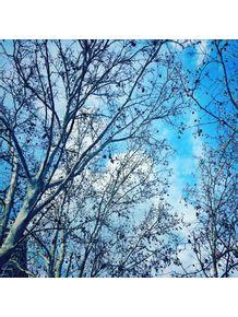 quadro-outono-blue