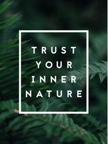 quadro-your-nature