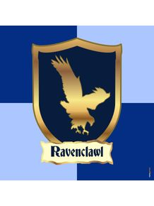 quadro-harry-potter-ravenclawl-corvinal