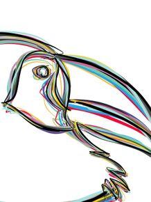 quadro-tucano-color