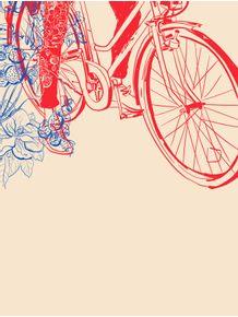 quadro-bicicleta-florida