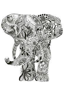 quadro-elefante-maori