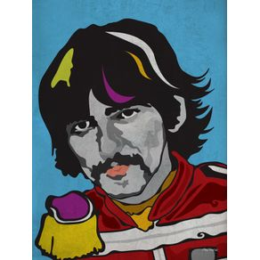quadro-serie-rockstars-all-stars-harrison-sgt-peppers