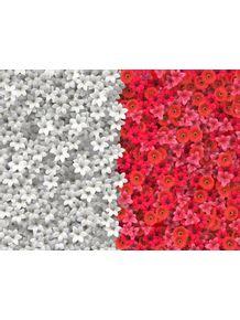 quadro-boundary-flowers--fronteira-flores