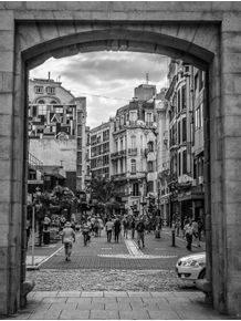 quadro-puerta-de-la-ciudadela