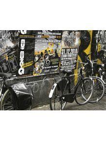 quadro-bikes-amsterdan-1