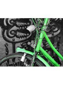 quadro-bikes-amsterdan-3