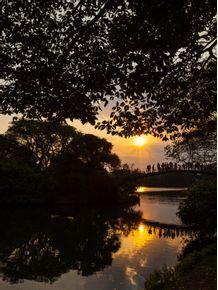 quadro-ibira-sunset