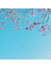 quadro-sky-bloom