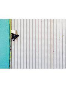 quadro-dogspy