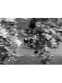 quadro-bike-pb