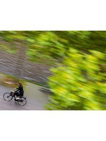 quadro-bike-gir-fast
