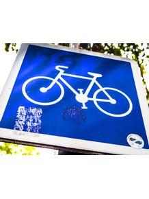 quadro-bike-blue-geo