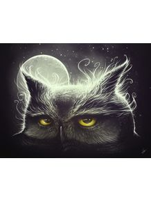 quadro-owl-and-the-moon