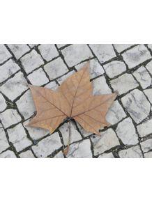 quadro-outono-portugues